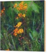 Flowers In The Woods At The Haciendia Wood Print by David Lane