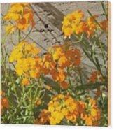 Flowers Orange 2 Wood Print by Warren Thompson