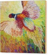 Flushed - Pheasant Wood Print by Marion Rose