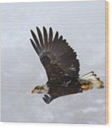 Foggy Flight Wood Print by Mike  Dawson
