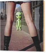 For Alien Eyes Only Wood Print by Richard Henne