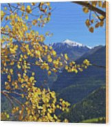 Framed By Fall Wood Print by Scott Mahon