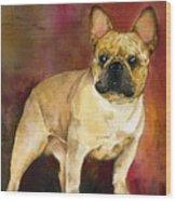 French Bulldog Wood Print by Kathleen Sepulveda