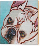 French Bulldog Wood Print by Nadi Spencer
