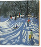 Fun In The Snow Wood Print by Andrew Macara