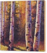Golden Light Wood Print by David G Paul