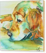 Golden Retriever Profile Wood Print by Christy  Freeman