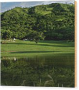 Golfito Desde La Laguna Wood Print by Bibi Romer