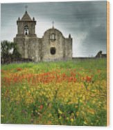 Goliad In Spring Wood Print by Jon Holiday