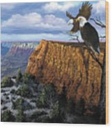 Grand Canyon Lookout Wood Print by Harold Shull