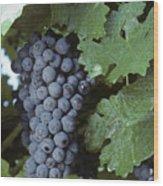 Grapes On The Vine Wood Print by Kenneth Garrett