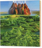 Green Fly Geyser Wood Print by Inge Johnsson