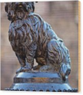 Greyfriars Bobby Wood Print by Andre Goncalves