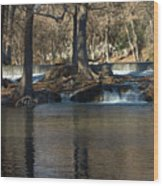 Guadalupe Overflows Wood Print by Karen Musick