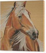 Haflinger  Wood Print by Melita Safran