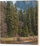 Half Dome Yosemite Wood Print by Tom Dowd
