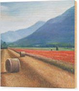 Haybales In Italy Wood Print by Ann  Cockerill