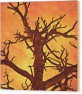 Hell Wood Print by Charles Dobbs