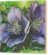 Helleborous Blue Lady Wood Print by Karin  Dawn Kelshall- Best