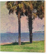 Historic Fort Sumter Charleston Sc Wood Print by Susanne Van Hulst