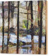 House Surrounded By Trees 2 Wood Print by Lanjee Chee