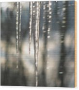 Icicle Art Fun 13 Wood Print by Debra     Vatalaro