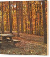 In The Park Wood Print by Kathy Jennings