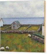 Inishmore Island Wood Print by Brenda Williams