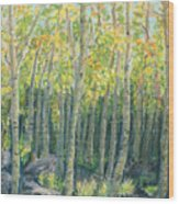 Into The Aspens Wood Print by Mary Benke