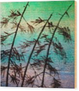 Into The Wind Wood Print by Rick Silas