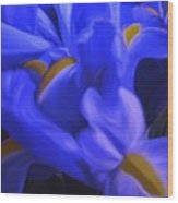Iris Sparkle Wood Print by Roxy Riou
