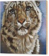 Jewel Wood Print by Barbara Keith