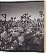 Joshua Tree Forest St George Utah Wood Print by Steve Gadomski