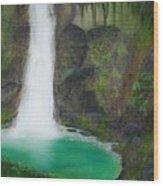 Juana Falls Wood Print by Tony Rodriguez