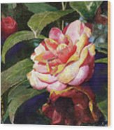 Karma Camellia Wood Print by Andrew King