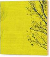 Krishna Wood Print by Skip Hunt