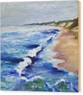 Lake Michigan Beach With Whitecaps Wood Print by Michelle Calkins