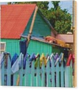 Laundry Day Wood Print by Debbi Granruth