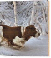 Leading The Way Wood Print by Kristin Elmquist