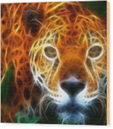 Leopard Watching At His Prey Wood Print by Pamela Johnson