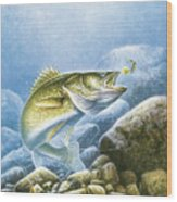 Lindy Walleye Wood Print by JQ Licensing
