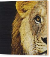 Lion Art - Face Off Wood Print by Sharon Cummings