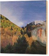 Lockett Meadow Looks Back Wood Print by Richard Henne