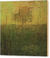 Lone Tree In Meadow -textured Wood Print by Dave Gordon