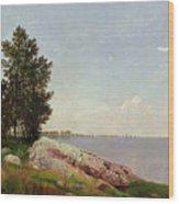 Long Island Sound At Darien Wood Print by John Frederick Kensett