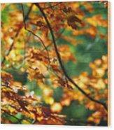 Lost In Leaves Wood Print by Kathy McClure