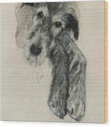 Luck Of The Irish Wood Print by Cori Solomon
