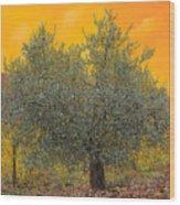 L'ulivo Tra Le Vigne Wood Print by Guido Borelli