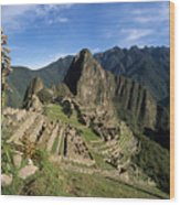 Machu Picchu And Bromeliad Wood Print by James Brunker
