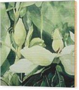 Magnolium Opus Wood Print by Elizabeth Carr